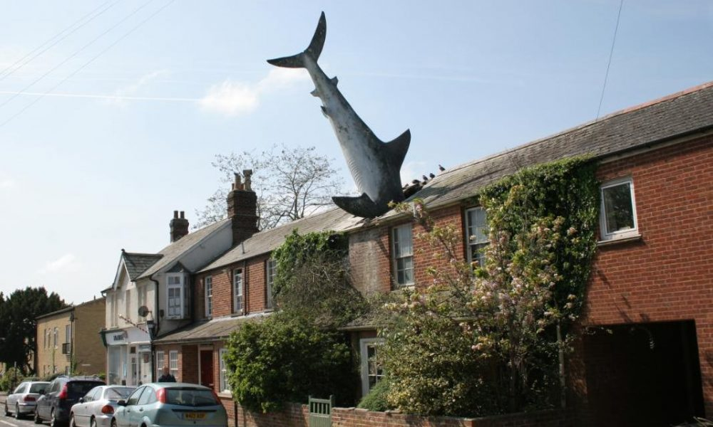 Oxford 'Shark House' goes up for rent